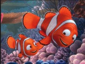 Marlin, Nemo's eventually perfect father